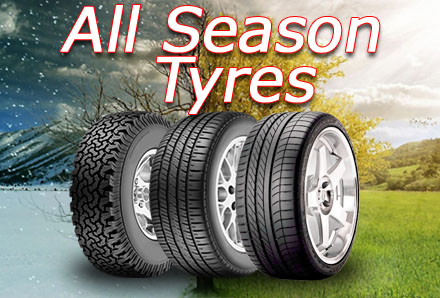 All Sesion Tyres